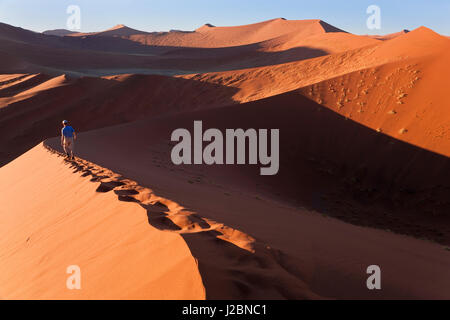 Middle aged man climbing sand dunes, Parc National Namib Naukluft, Namibie Banque D'Images