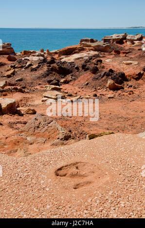 L'ouest de l'Australie, Broome, Gantheaume Point. Réplique de 130 millions d'années empreintes de dinosaures trouvés Banque D'Images