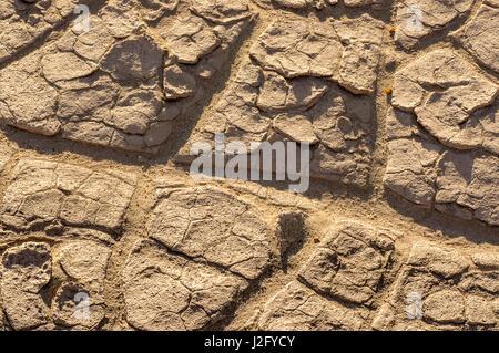 La boue séchée de Mesquite Flat Dunes, Death Valley, Californie Banque D'Images