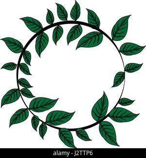 Image couleur couronne de feuilles décoratives en forme circulaire Banque D'Images