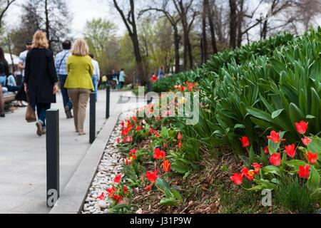 La Russie, Moscou. Lundi 1er mai 2017. Couvert, mais vraiment chaud jour de mai. La température est d'environ +24 Banque D'Images