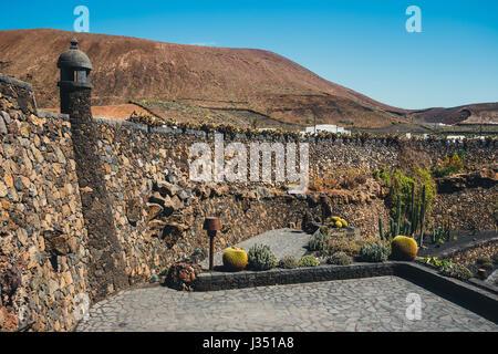 Vue sur jardin de cactus, jardin de cactus à Guatiza, attraction populaire à Lanzarote, îles canaries Banque D'Images
