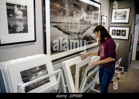 Floride, Floride, Sud, les Everglades, Ochope, Tamiami Trail, Big Cypress Gallery, Clyde Butcher, photographie en noir et blanc, photographe, paysage,