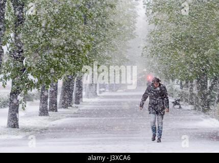 Homme marchant dans la rue dans une tempête de neige en avril. Effet du réchauffement climatique. Banque D'Images