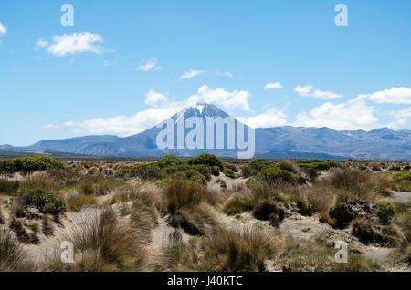 Le mont Ngauruhoe en arrière-plan et de premier plan dans le désert Rangipo (Nouvelle-Zélande) Banque D'Images