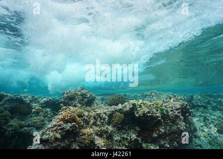 Vague se brisant sur le récif sous l'eau, l'océan Pacifique, Huahine, îles de la société, Polynésie Française Banque D'Images