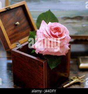 Fleur rose en coffret bois Banque D'Images