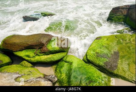 Océan surf tourne autour des algues vertes sur les rochers, Koh Samet island, Thaïlande. Banque D'Images
