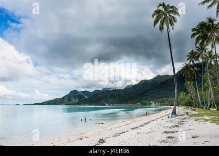 Plage PUBLIQUE DE TEMAE, Moorea, îles de la société, Polynésie Française, Pacifique Banque D'Images