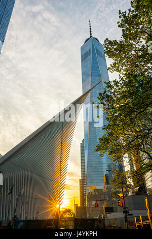 World Trade Center Transportation Hub au coucher du soleil par Santiago Calatrava et la construction d'un World Banque D'Images