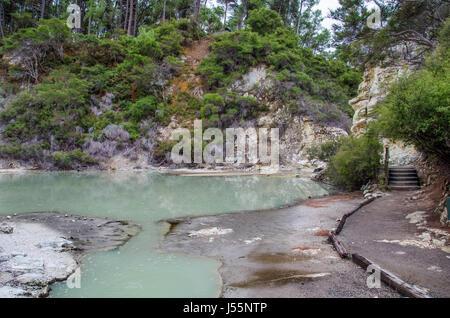 Étang colorés à Wai-O-Tapu Thermal Wonderland qui est situé dans la région de Rotorua, Nouvelle-Zélande. Banque D'Images