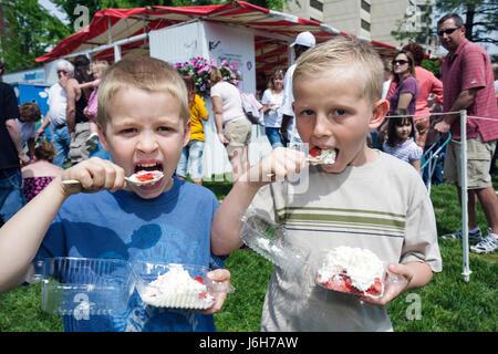 Virginie, Virginie, Sud, comté de Roanoke, Roanoke, Elmwood Park, festival de la fraise de l'école communautaire, Banque D'Images