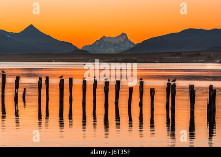 Golfe Almirante Montt,Puerto Natales, Chili - les eaux de l'océan Pacifique au Chili, Patagonie, Région de Magallanes Banque D'Images