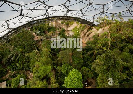 UK, Cornwall, St Austell, Bodelva, Eden Project, le biome de la forêt tropicale, grand angle vue vers le bas à partir Banque D'Images