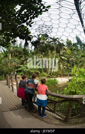 UK, Cornwall, St Austell, Bodelva, Eden Project, le biome de la forêt tropicale, les visiteurs dans la plantation Banque D'Images
