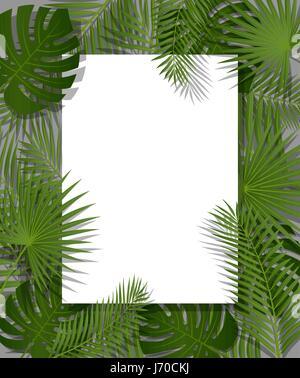 Livre blanc sur fond vert tropical d'été avec des feuilles de palmier et plante. Vector floral design. Banque D'Images