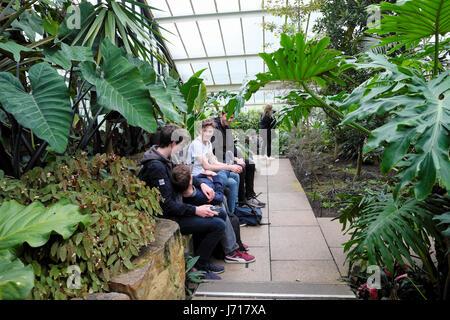 Groupe de garçons de l'école étrangère vous détendre dans le Princess of Wales conservatory parmi les plantes de Banque D'Images