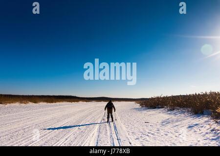 Vue arrière de l'homme sur la neige ski champs couvert contre le ciel bleu Banque D'Images