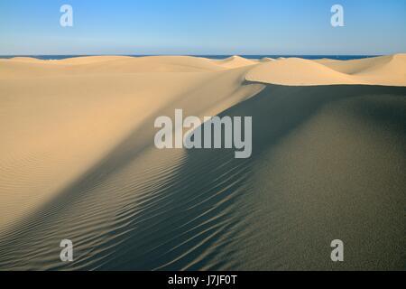 De vastes dunes de sable côtières, Maspalomas, Gran Canaria, mai 2016. Banque D'Images