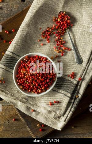 Poivre rouge organique sèche prête à broyer Banque D'Images