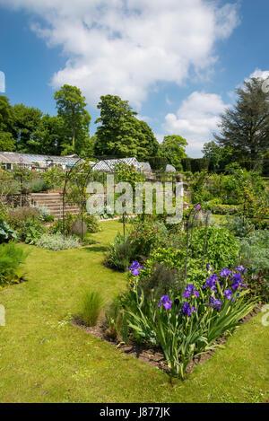 Terrasse parfumée à Thornbridge hall gardens près de Great Longstone, Derbyshire, Angleterre. Banque D'Images