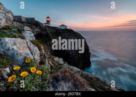 Ciel rose au coucher du soleil et des fleurs jaunes le phare du châssis, Cabo de Sao Vicente, Lagos, Algarve, Portugal, Europe