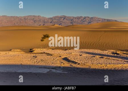 L'argile fissurée, boue séchée, Mesquite Flat dunes de sable, Death Valley National Park, Death Valley, Californie Banque D'Images