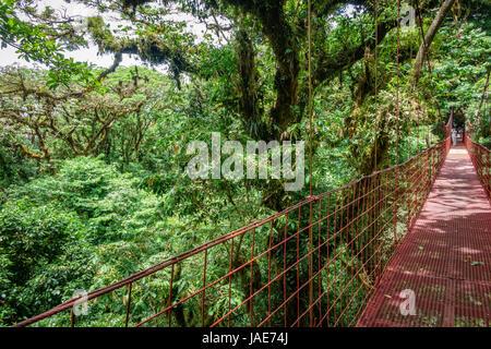 Vue grand angle du pont suspendu rouge dans la forêt tropicale de Monteverde au côté droit de l'image Banque D'Images