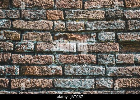 Mur de briques avec des lichens. La texture d'arrière-plan Banque D'Images