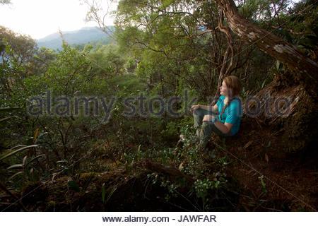 Une fille regarde le lever du soleil à partir de la roche moussue, un point élevé sur la crête à Gunung Palung National Banque D'Images