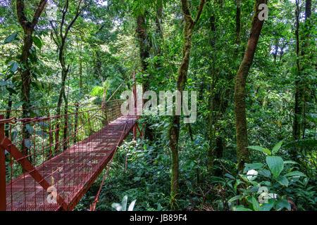 Vue grand angle du pont suspendu rouge dans la forêt tropicale de Monteverde Banque D'Images