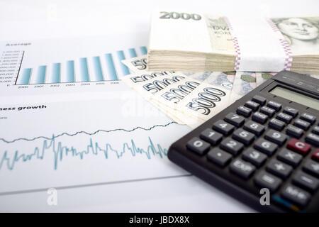 Travail avec l'argent d'affaires tchèque, calculatrice et graphiques, les collage Banque D'Images