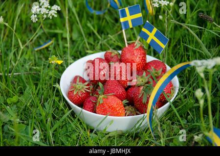 Les fraises fraîchement cueillies dans un bol blanc porcelaine dans les prés herbeux. Célébration de vacances Suède Banque D'Images