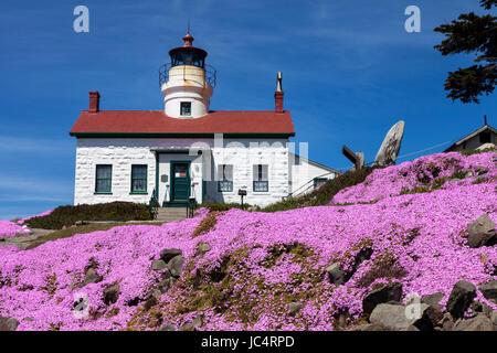 Les fleurs fleurissent au point de Batterie phare qui se trouve à l'extérieur de la Crescent City harbor le long Banque D'Images