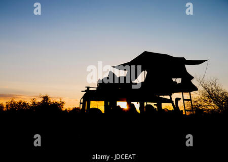 Location de tente sur le toit en silhouette matin lever de soleil en Afrique aventure safari camping Banque D'Images