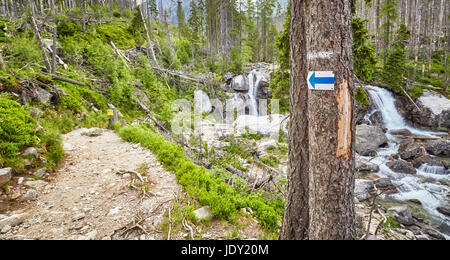 La marque de la flèche sur le sentier de randonnée, d'arbres Hautes Tatras, en Slovaquie. Banque D'Images