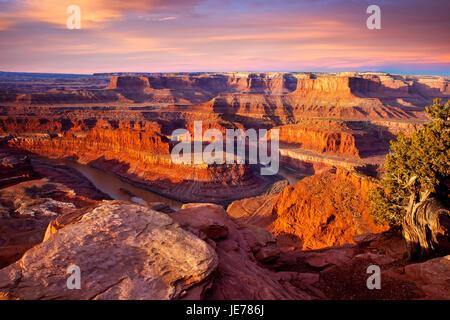 Le lever du soleil sur la rivière Colorado ci-dessous Dead Horse Point State Park près de Moab, Utah, USA