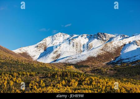 La vallée de la rivière Eagle, arbres aux couleurs de l'automne la vallée de remplissage, de la neige couvrant les Banque D'Images