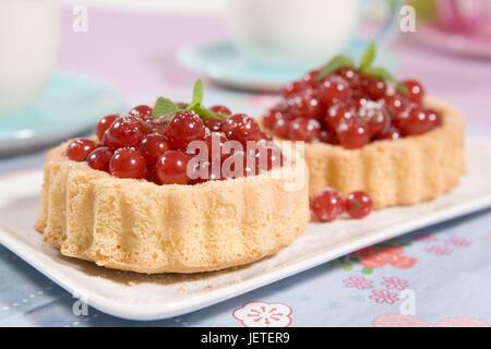 Johannisbeer-Tartelettes, gâteau, tartelettes, dessert, pouding à la vanille, de l'alimentation, de gâteaux, de Banque D'Images