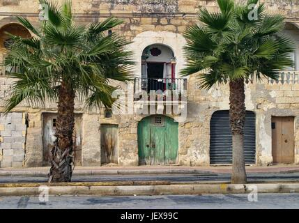 Marsaxlokk, Malte. 27 Sep, 2004. Palmiers bordent une rue traditionnelle dans le pittoresque village de pêcheurs Banque D'Images