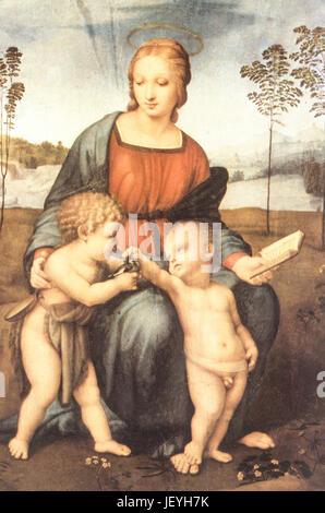 Madone du chardonneret, Raffaello Sanzio Banque D'Images