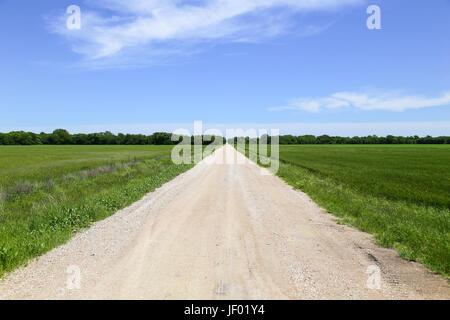 Route de campagne entre les champs Banque D'Images