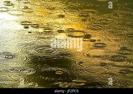 Gouttes de pluie tombant dans une piscine de l'eau éclairée par la création de modèles de cercle dans l'eau encore Banque D'Images