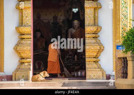 Monk à Chiang Mai Banque D'Images