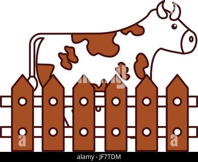 La ferme de la vache en clôture Banque D'Images