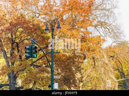Détail de Central Park à New York Banque D'Images