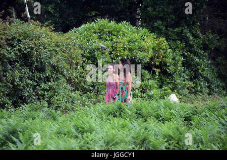 Londres, Royaume-Uni, 7 juillet 2017 Le soleil brille, à Richmond Park Crédit: JOHNNY ARMSTEAD/Alamy Live News Banque D'Images