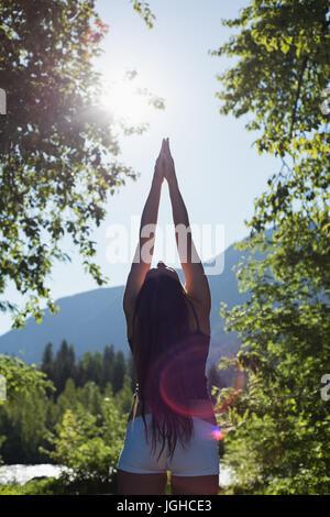 Vue arrière du couple dans une forêt verte sur une journée ensoleillée Banque D'Images