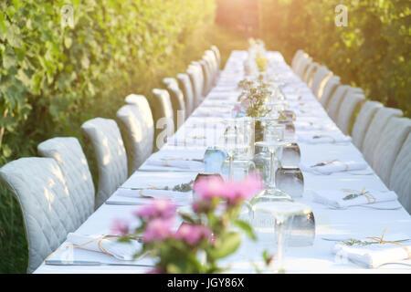 Partie table set for social événement dans la campagne Banque D'Images