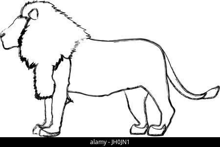 Grand lion fière africaine noblesse puissante et féroce permanent Banque D'Images